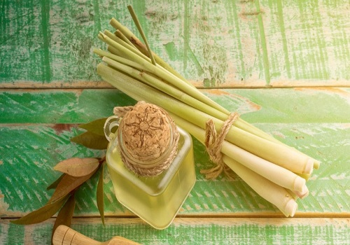 Popular health benefits of lemongrass oil