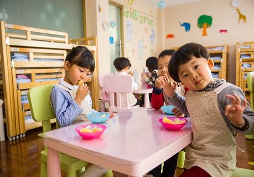 Steps Towards Proper Child's Development