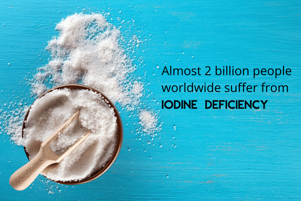 Iodine-Rich Foods That You Need