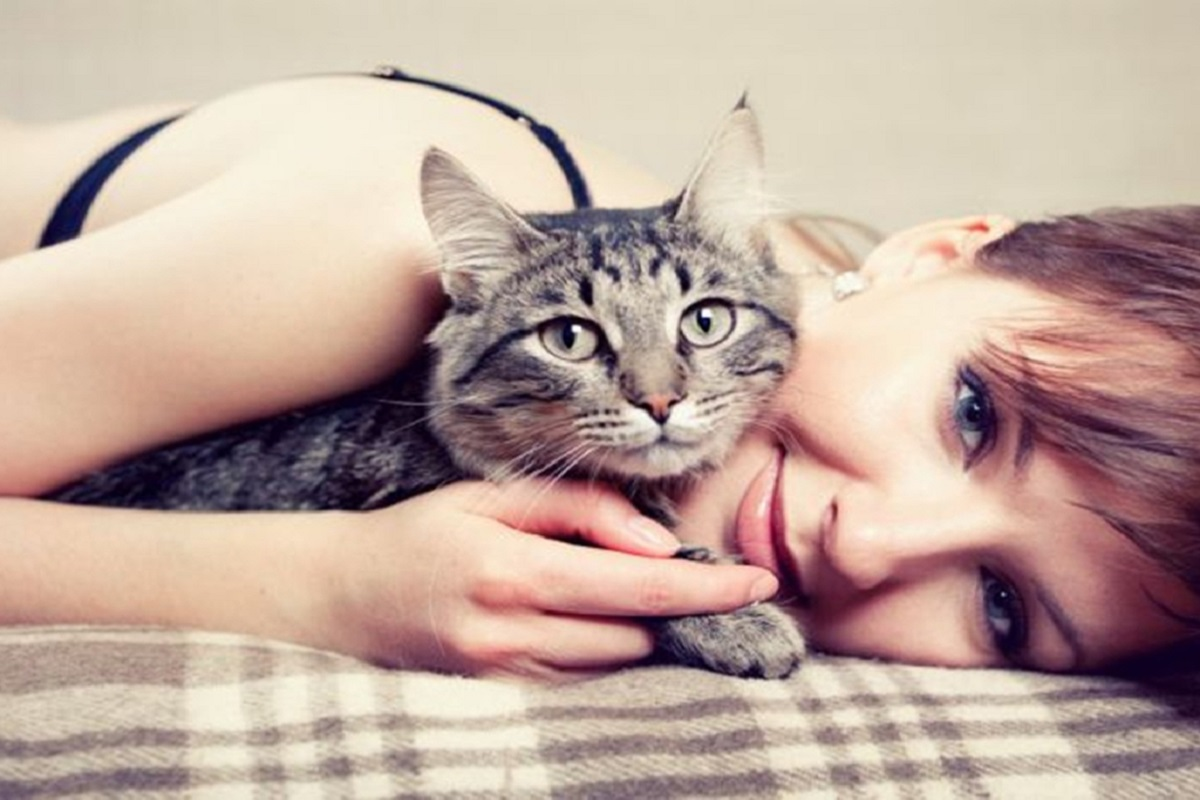 5 Reasons Why Cats Are The Best Pet