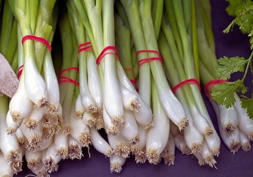 An Indistinguishable Topping to Spread on your Diet – Spring Onions!