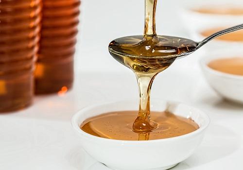 Honey: Nature's Divine Gift
