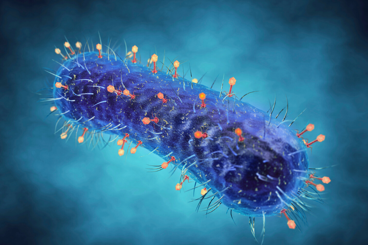 Complete Insight On Viral Infections