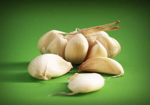 Garlic: A Herb With Infinite Benefits