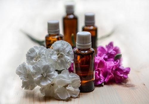4 Herbs That Prevent Hair Loss