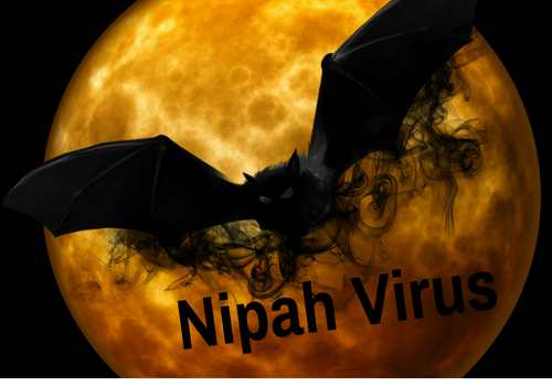 Why should you be aware of Nipah virus?