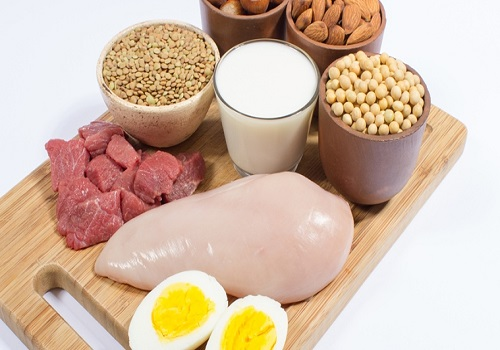 Role And Importance Of Proteins In The Body