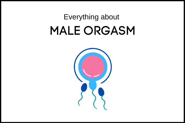 THE SCIENCE OF MALE ORGASM