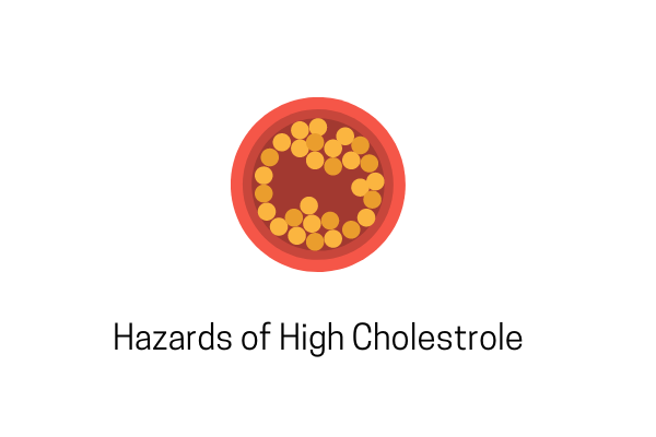 Understanding The Hazards Of High Cholesterol