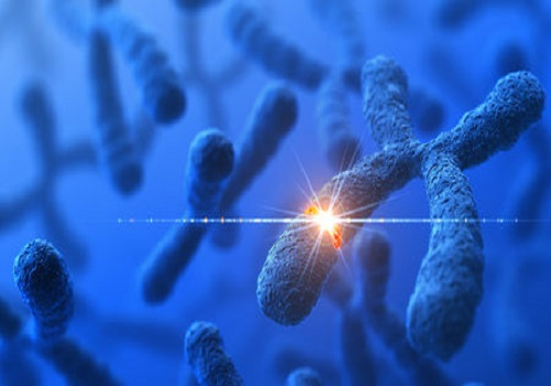 List Of Diseases That Might Develop Due To Genes