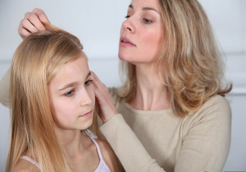 How to save yourself from the attack of head lice?