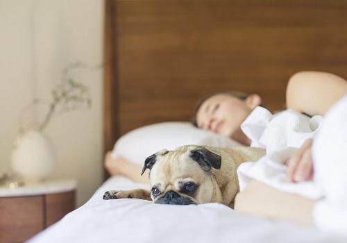 Tips will help you sleep well